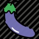 eggplant, fruit, vegetable, vitamin icon