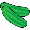 marrow, squash, vegetable, zucchini icon