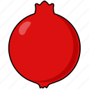 berry, food, fruit, granate, pomegranate, slice icon