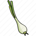green, leaf, onion, plant, vegetable icon