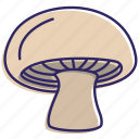 food, healthy food, mashroom, mushrooms, organic, vegetable, vegetables icon