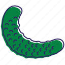 cucumber, cucumbers, fresh cucumber, healthy food, vegetable, vegetables icon