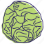 cabbage, eating, healthy food, kitchen, lunch, vegetable, vegetables icon