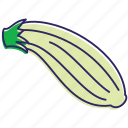 eating, food, healthy food, vegetables, vegetable, zucchini icon