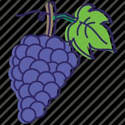 grape, grapes, grapevine, healthy food, red grape icon