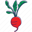 food, healthy food, organic, red vegetable, vegetable, vegetables icon
