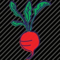 food, healthy food, organic, red vegetable, vegetable, vegetables icon