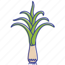 cook, healthy food, kitchen, leeks, vegetable, vegetables icon
