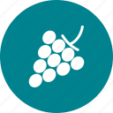 bunch, food, grape, grapes, nature, red, ripe icon