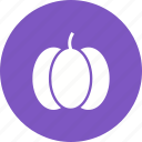 color, food, fruit, halloween, pumpkin, pumpkins, vegetable icon