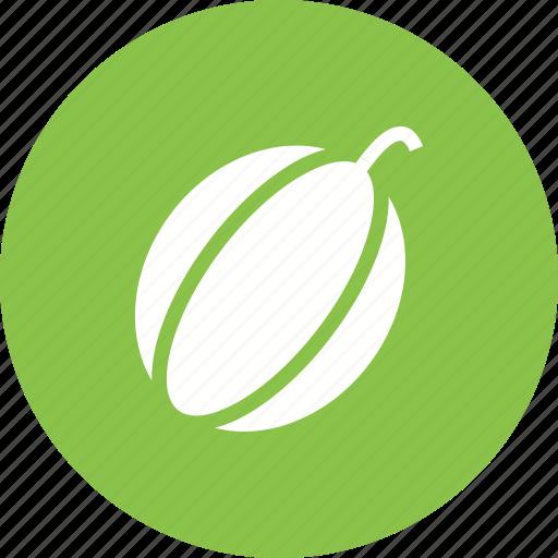 food, healthy, melon, muskmelon, rockmelon, sweet icon