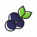 blueberry, fresh, fruits, vegetables icon