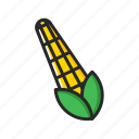 corn, fresh, fruits, vegetables icon