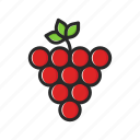 fresh, fruits, grapes, vegetables icon