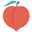 apricot, food, fruit, healthy, vitamins icon