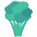 broccoli, food, healthy, vegetable, vegetarian icon