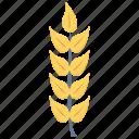 crop, food, grain, rice, wheat icon