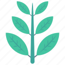 food, leaf, leave, nature, vegetable icon