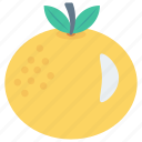 citrus, food, fruit, orange, slice