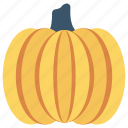 food, fruit, pumpkin, vegetable, vitamins icon