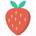 food, fruit, healthy, strawberry, vitamins icon