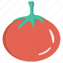 food, fruit, ketchup, tomato, vegetable icon