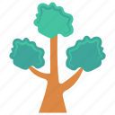 garden, green, nature, park, tree icon