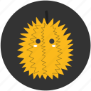 durian, fruit, spike, tropical, tropical fruit icon