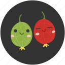 clean food, fruits, fruity, gooseberry, ingredient, sour, sweet icon