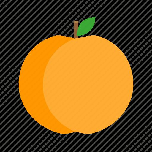 orange fruit icon png wwwpixsharkcom images