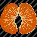 citrus, flat, mandarin, orange, satsuma, tangerine, tree