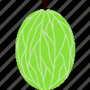 food, fruit, currant, flat, gooseberry, ribes, bush icon
