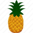 ananas, flat, food, fruit, genus, pineapple, plant