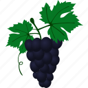 flat, grape, grapevine, muscadine, slipskin, vine, vino icon