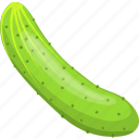 agriculture, cucumber, flat, food, green, natural, ripe