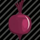 beet, beetroot, flat, natural, root, vegetable, vegetarian icon