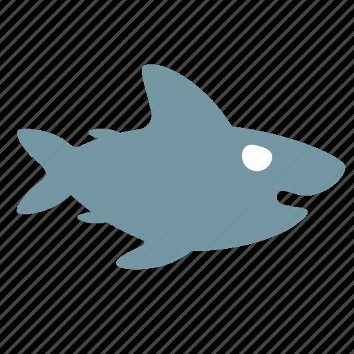 animal, ocean, predator, sea, shark icon