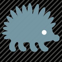 animal, hedgehog, porcupine, predator, scratchy, spinose icon