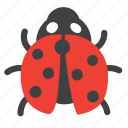 animal, bug, insect, lady, ladybug icon