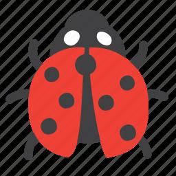 animal, bug, insect, lady, ladybug icon