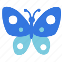 animal, butterfly, flying, insect icon