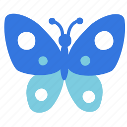 animal, butterfly icon