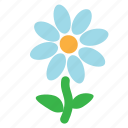 camomile, ecology, environment, flower, nature, plant icon