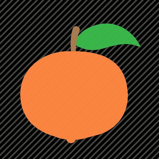 citrus, mandarin icon