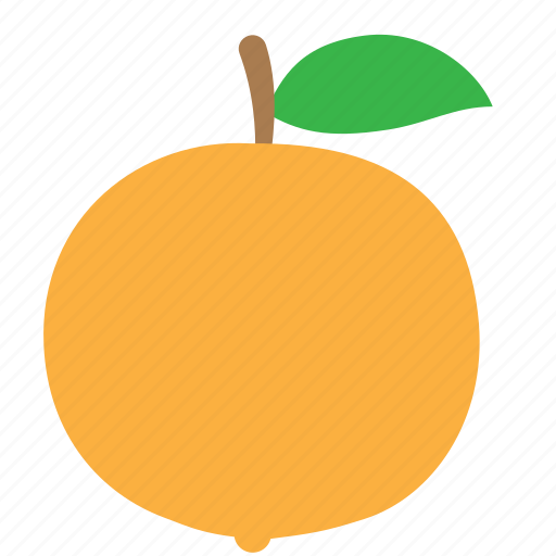 citrus, food, fruit, nature, orange, vegetarian icon