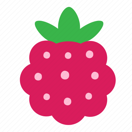 berry, food, nature, raspberry icon