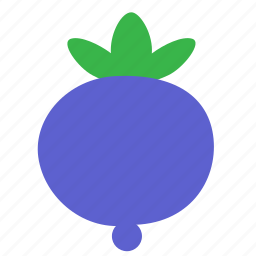 berry, bilberry, blueberry, food, huckleberry icon