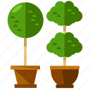furnishings, furniture, interior, nature, plant, plants icon