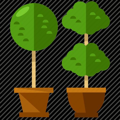 furnishings, furniture, interior, nature, plant, plants icon