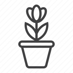 floral, flower, garden, growth, nature, plant, pot icon